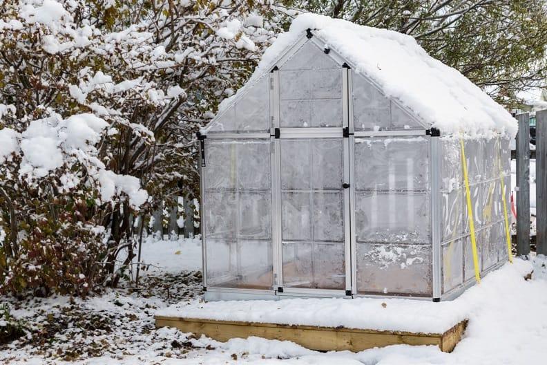 Gartenarbeit im Winter – Das gibt es jetzt zu tun!