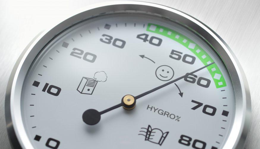 Luftfeuchtigkeit erhöhen – 4 Tipps