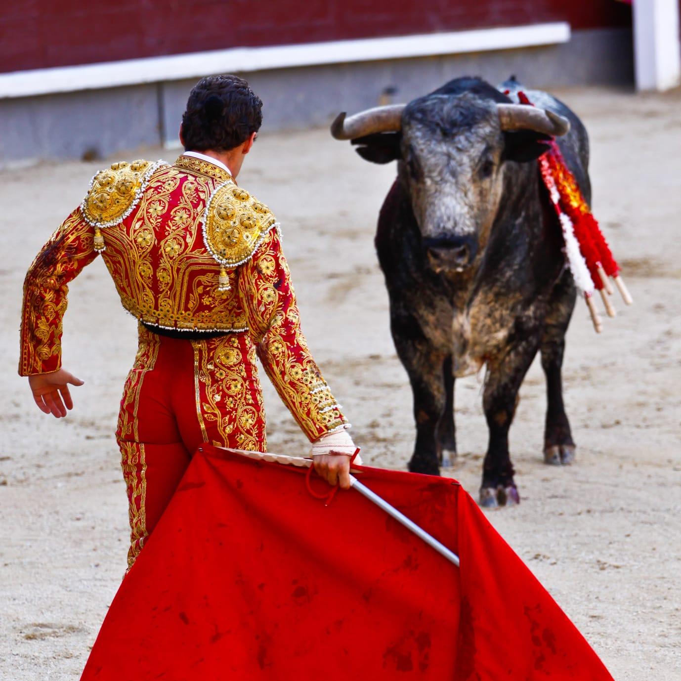 torero tuch