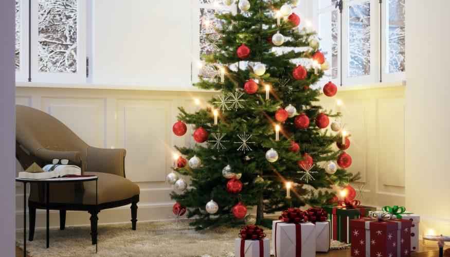 Weihnachtsbaum online bestellen – Unsere Tipps!
