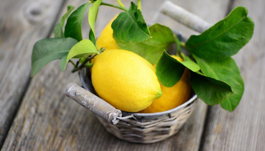 Zitronen haltbar machen – 4 Tipps