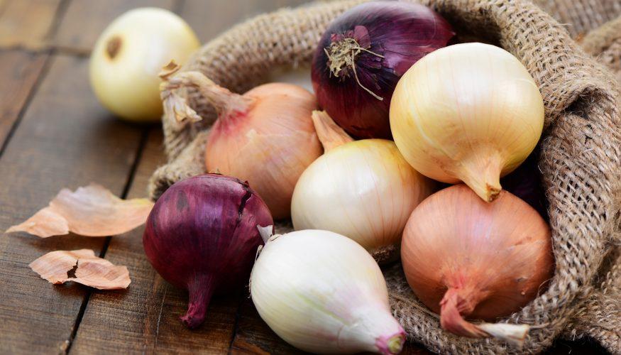 Zwiebeln haltbar machen – 4 Tipps