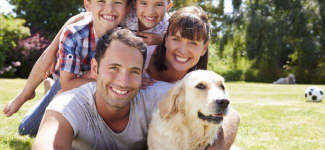 Hund halten – 10 Regeln