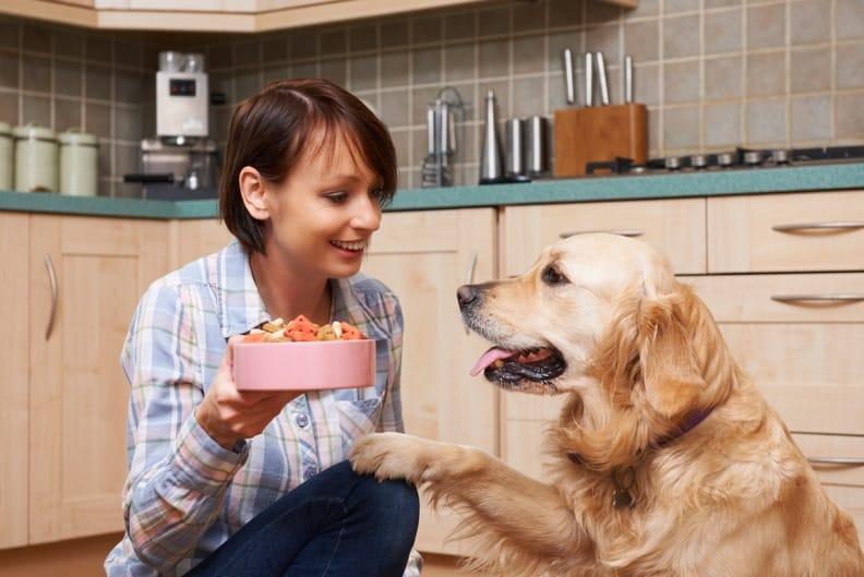 Hundefutter selbst herstellen – So wird's gemacht