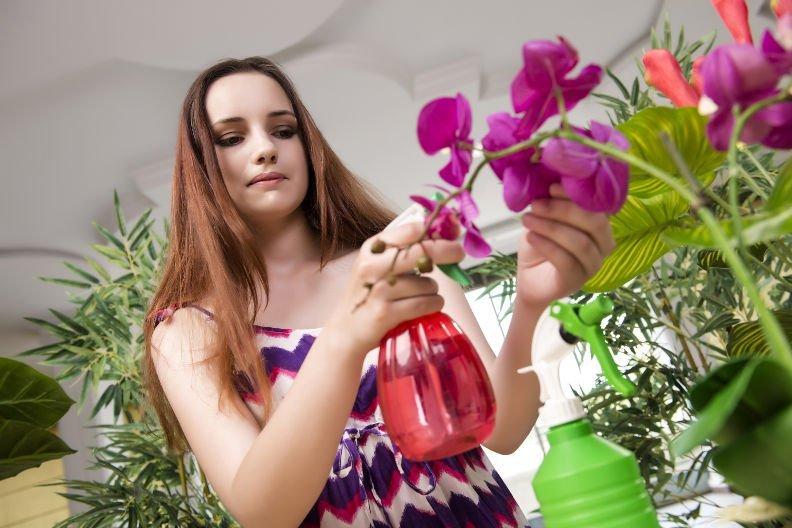 Orchideen richtig gießen – Das müssen Sie beachten