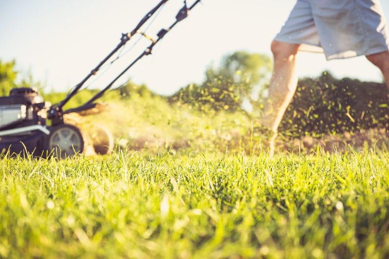 Rasen mähen – 9 Tipps