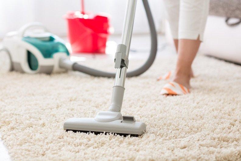 Tierhaare vom Teppich entfernen – Diese 5 Tipps gelingen garantiert