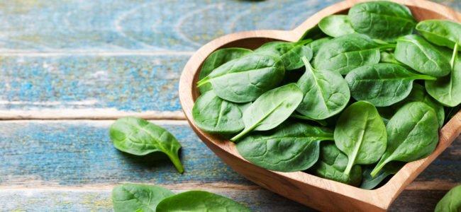 Darf man Spinat wieder aufwärmen? Was Sie beim Erwärmen beachten sollten