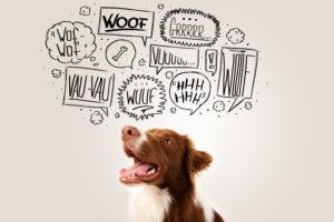 Hund mit lautmalerischen Sprechblasen