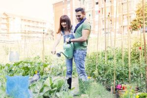 Paar gießt Pflanzen im Garten