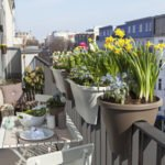 Balkon mit Pflanzen