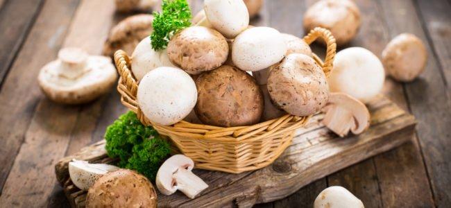 Egerlinge: Eine ganz besondere Pilzsorte?