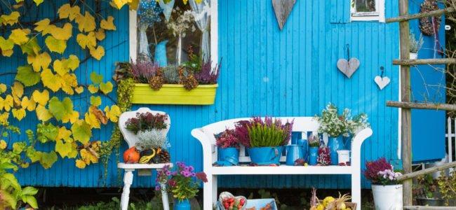 Garten gestalten mit wenig Geld: Günstige Gartenideen erklärt