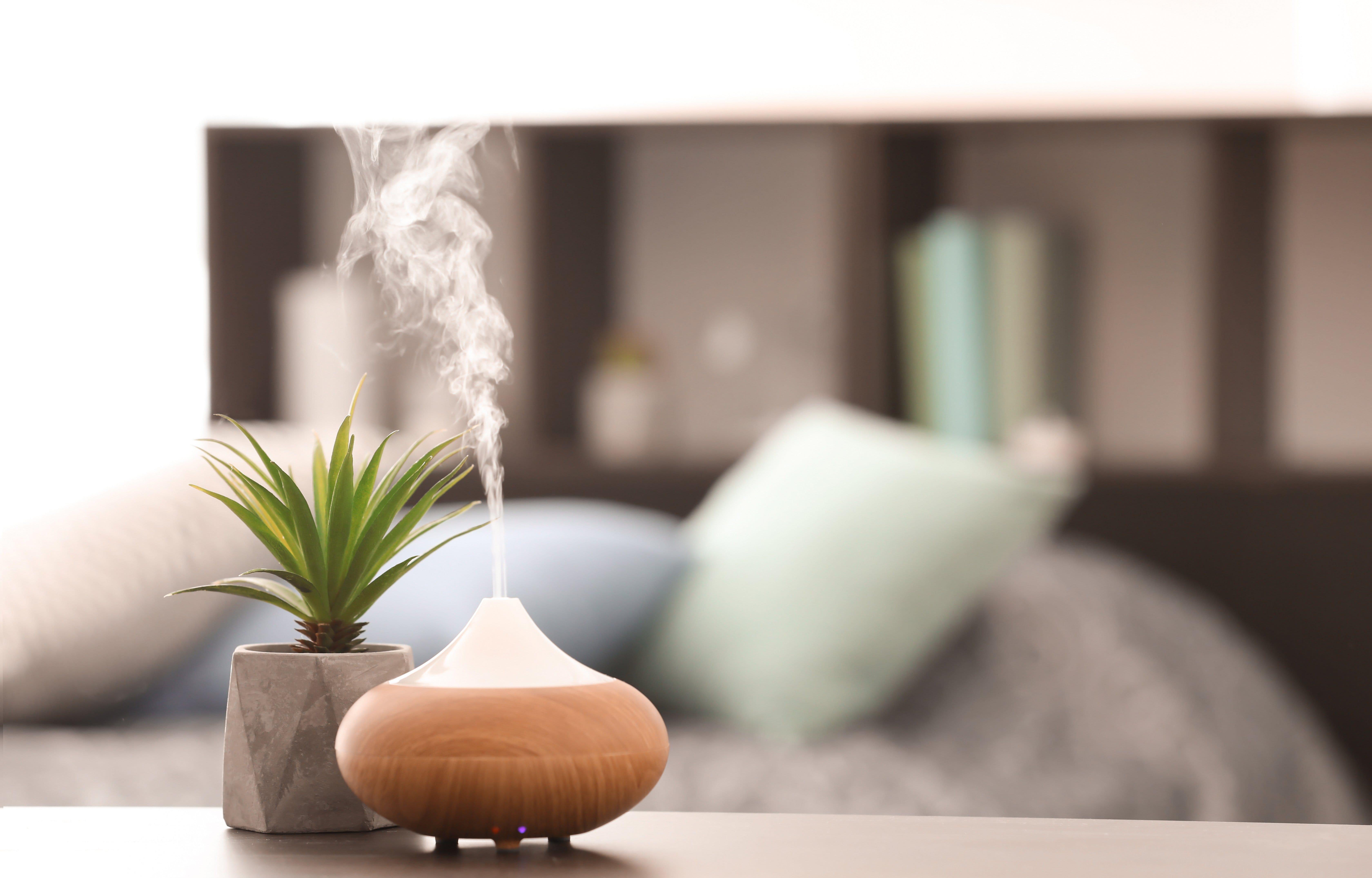 Luftfeuchtigkeit in Räumen regulieren: Tipps für die optimale