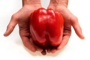 Hände halten paprika