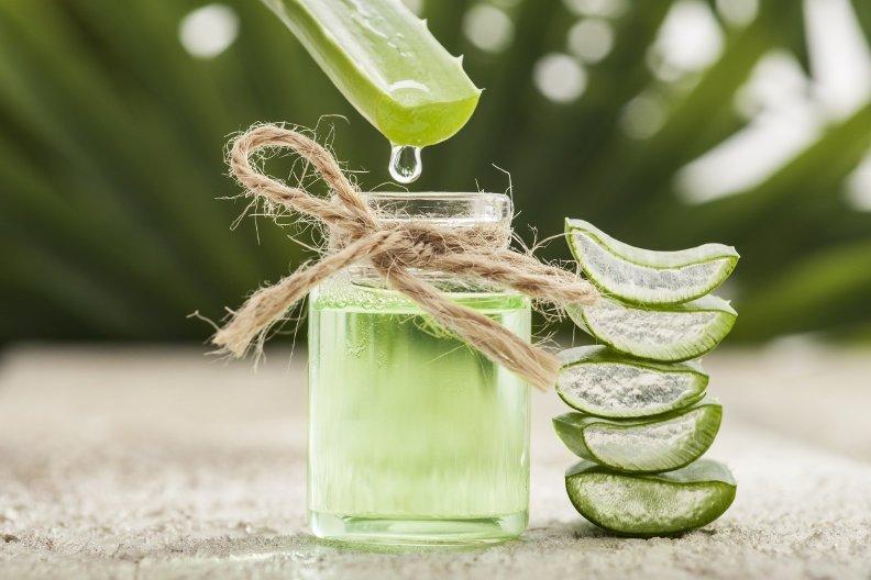 Aloe Vera – Anwendung und Wirkung