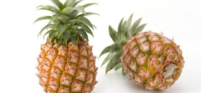 Ananas selber ziehen: Tipps zum Einpflanzen und zur Pflege