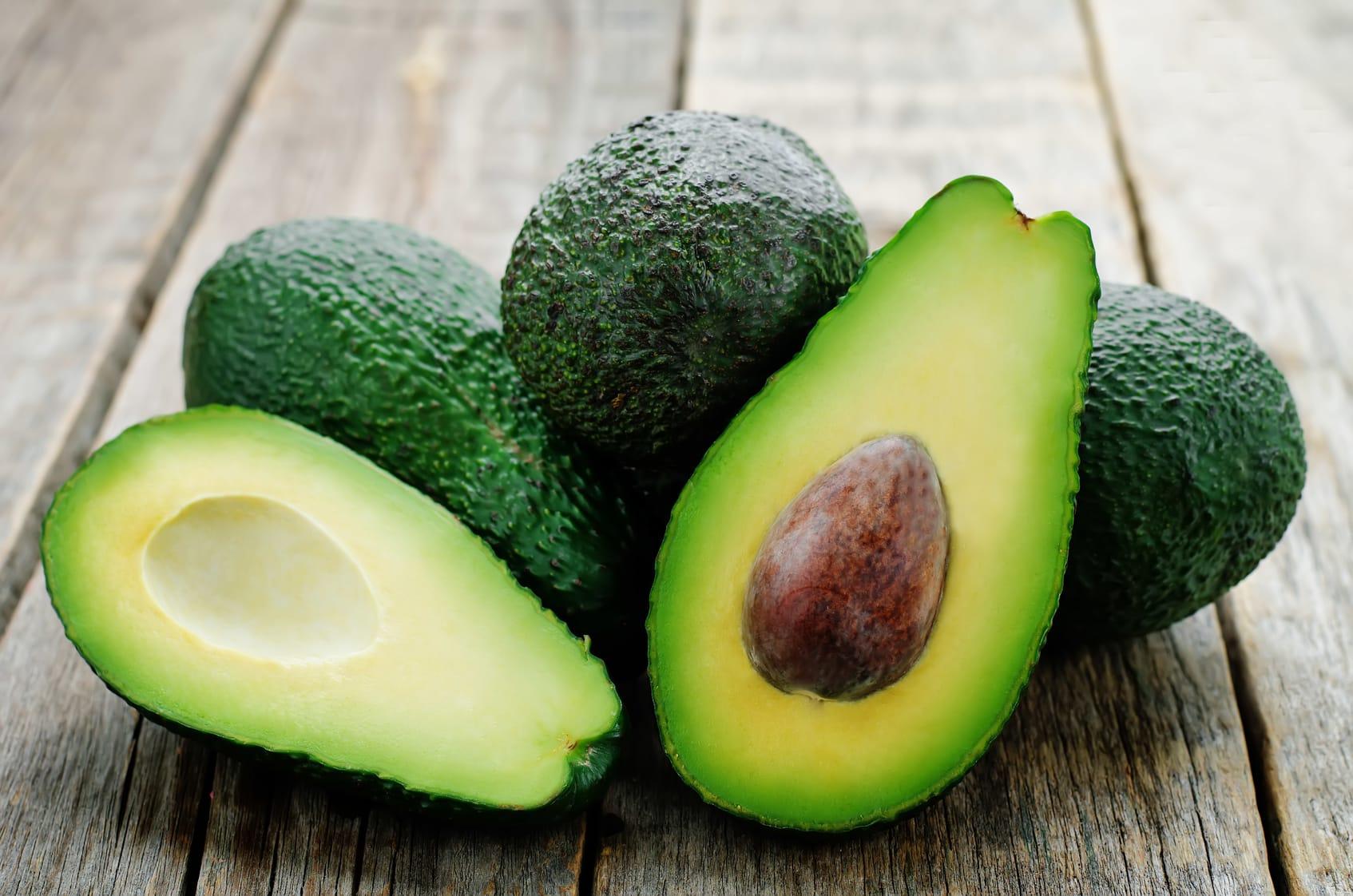avocado pflanze züchten