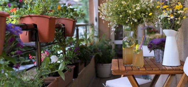 Garten auf dem Balkon: So machen Sie Ihren Balkon zur grünen Oase