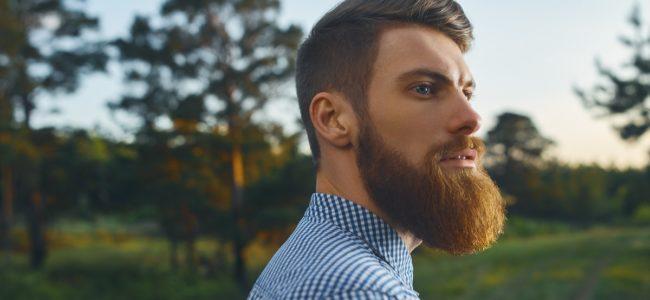 Bart weich machen: Mittel und Tipps für geschmeidige Barthaare