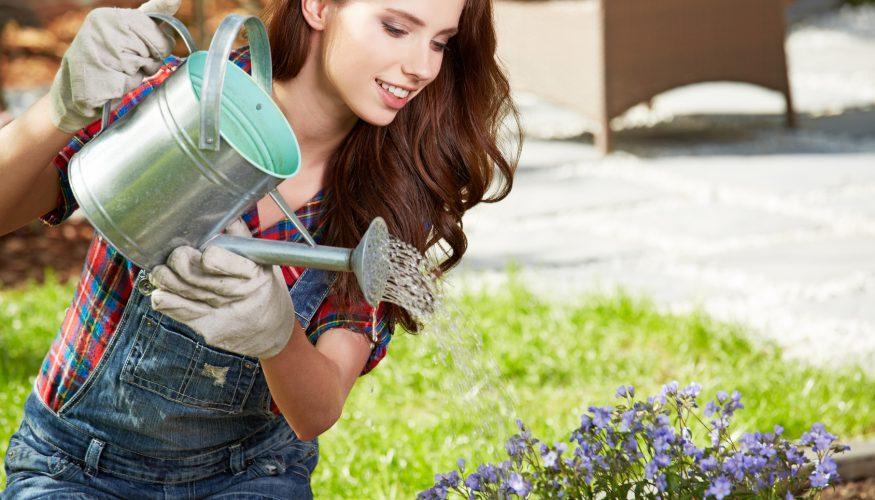 Sollte man Blumen mit abgestandenem Wasser gießen?