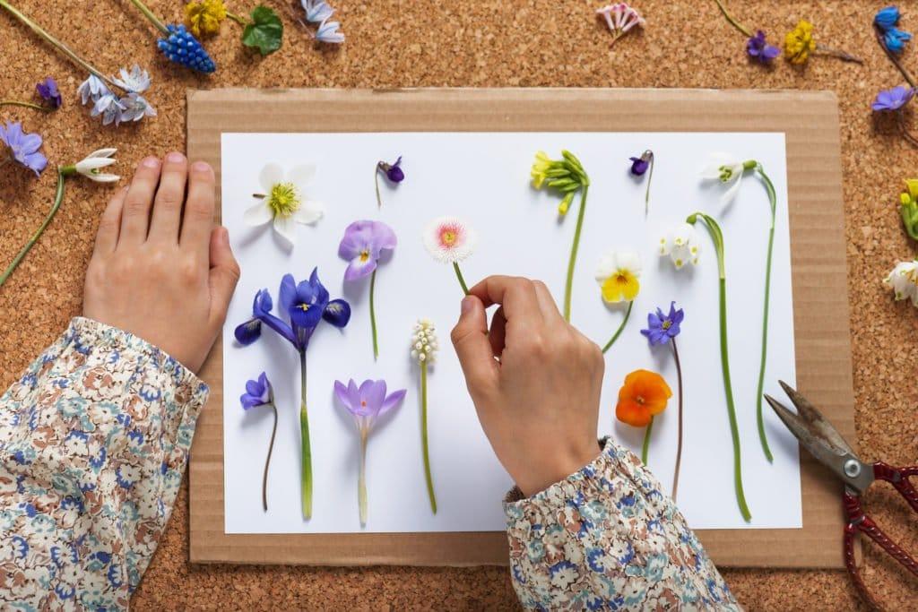 Blumen Pressen Wie Lange