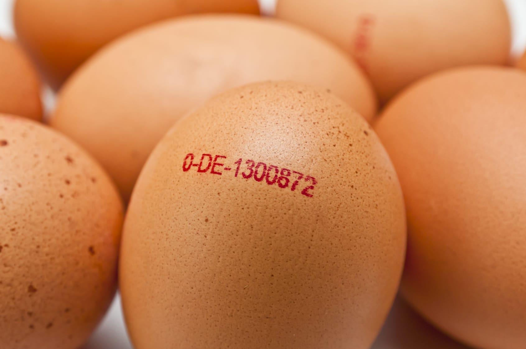 Eierkennzeichnung – Was bedeuten die Angaben auf dem Ei?