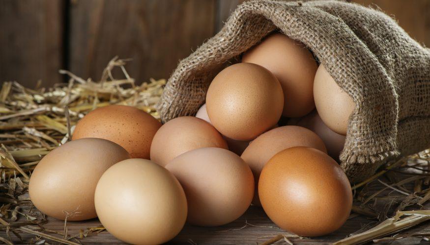Eierkörbchen Coccodandy – Eier sicher transportieren