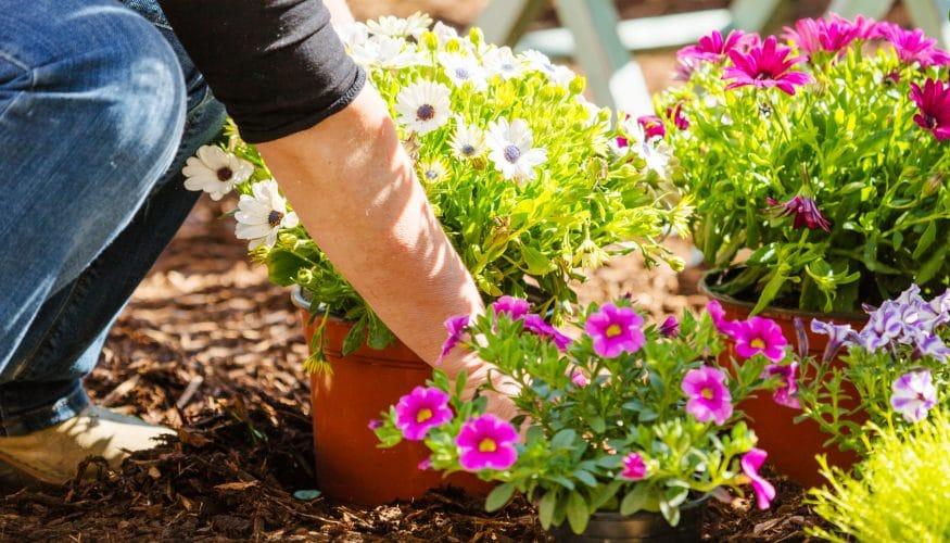 Garten anlegen - 8 Tipps & Tricks - Haushaltstipps.net