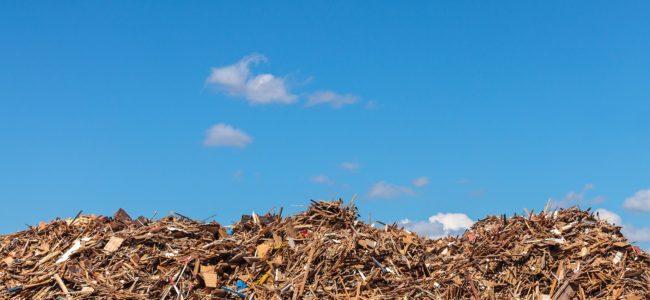 Holz entsorgen: Holzabfälle und Altholz fachgerecht entsorgen