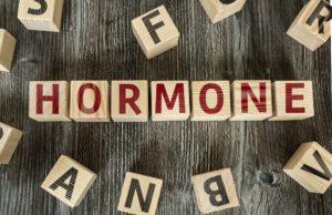 holzbuchstaben mit dem wort hormone
