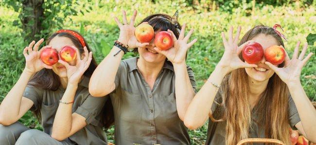 Obstbäume pflanzen – Von jeder Sorte immer zwei pflanzen?