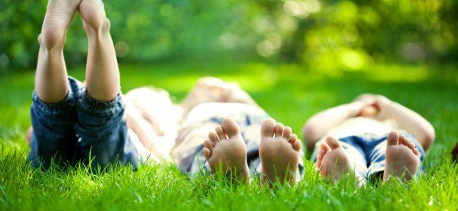Grasflecken entfernen: Mit diesen 7 Tipps klappt es garantiert!