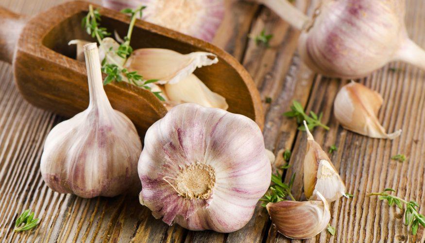 Knoblauch richtig lagern – 7 Tipps