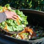Hand schichtet Schale mit Essensresten auf Kompost