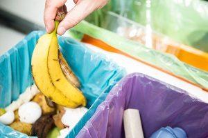 Mülleimer mit Biomüll