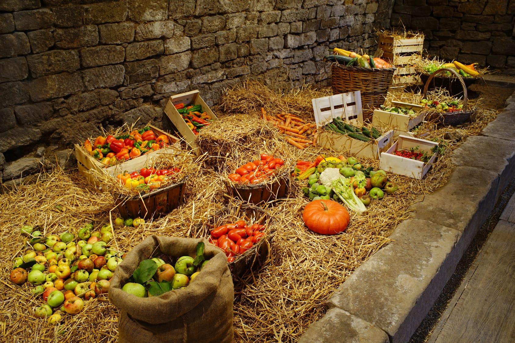 Welches Obst und Gemüse besser nicht zusammen lagern ...