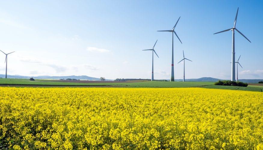 Ist Ökostrom teurer als Atomstrom?