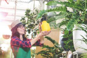 frau besprueht ihre Pflanzen mit Wasser