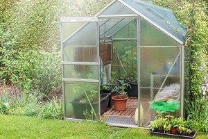 Gewächshaus mit Pflanzen.