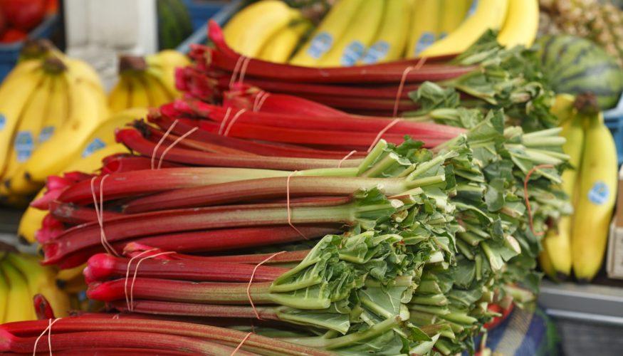 Ist Rhabarber ein Gemüse?