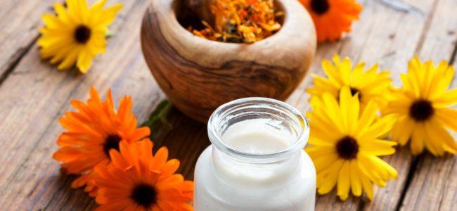 Ringelblumensalbe selber machen: Rezept zur Herstellung und Variationen