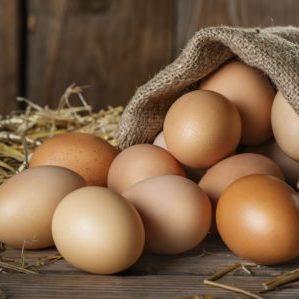 viele frische eier