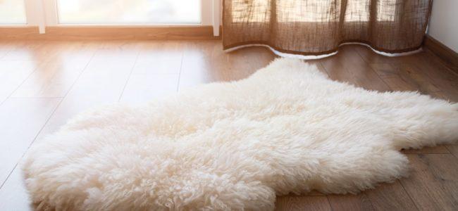 Schaffell waschen: So reinigen Sie echtes Schaf- und Lammfell richtig