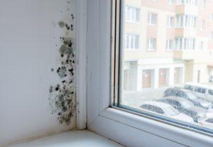 Fenster mit Schimmel am Rand