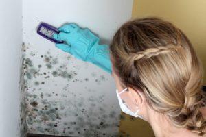 Frau entfernt einen Schimmelpilz mit Bürste