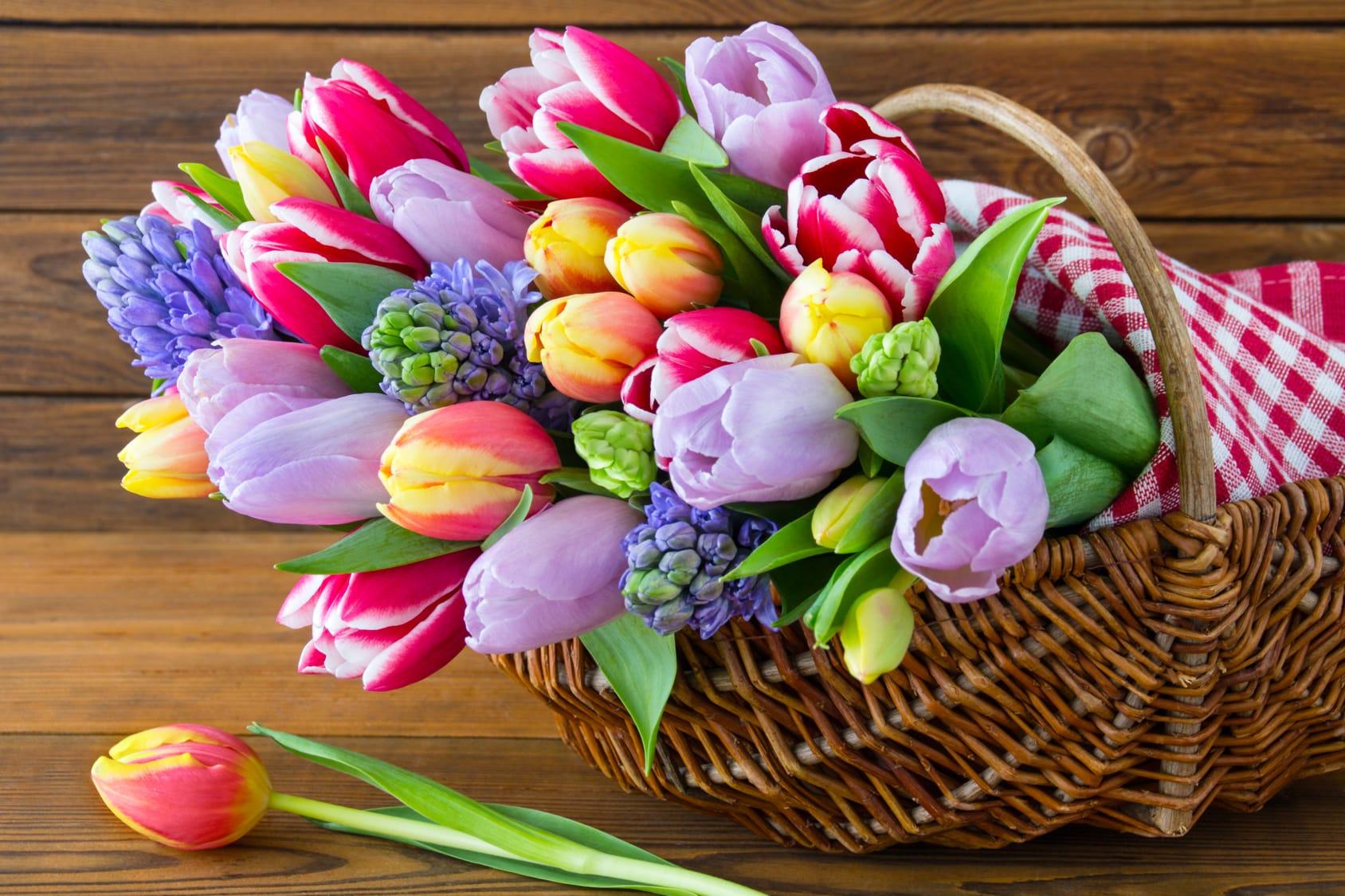 Schnittblumen frisch halten – 4 Tipps & Tricks
