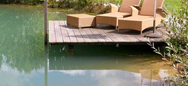 Schwimmteich bauen – So geht's