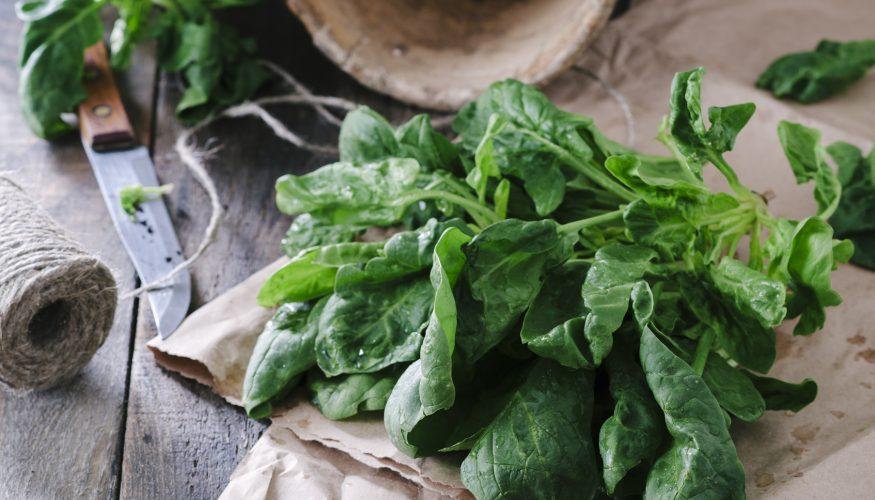 Spinatflecken entfernen – 5 Tipps & Tricks