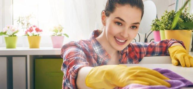 Staubwischen – Mit diesen 4 Tipps klappt's